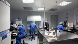 Barcelona IVF, image 5